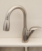 Solid Stainless Steel Faucet (200053B)